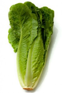 romaine-lettuce__95818_zoom